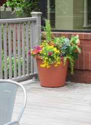 exterior-container-landscape-Philadelphia-0562