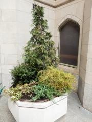 exterior-container-landscape-Philadelphia-4628