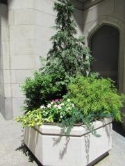 exterior-container-landscape-Philadelphia-48888