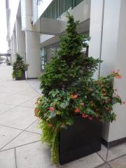 exterior-container-landscape-Philadelphia-4900