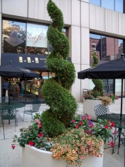 outdoor-spaces-patioscape-philadelphia-170
