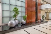 indoor-plants-for-businesses-philadelphia-2017-7