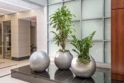 indoor-plants-for-businesses-philadelphia-2017-8
