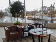 indoor-plants-for-businesses-philadelphia-4424