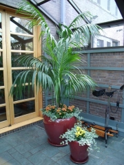 interior-plant-design-plantscape-philadelphia-0611