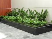 interior-plant-design-plantscape-philadelphia-3791