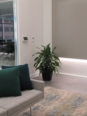 Corporate-Interior-Plantscape-Center-City-Philadelphia-1273