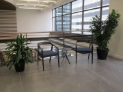 Corporate-Interior-Plantscape-Center-City-Philadelphia-1277