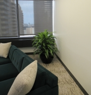 Corporate-Interior-Plantscape-Center-City-Philadelphia-1279