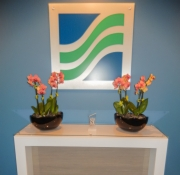 Corporate-Interior-Plantscape-Colorbowl-Center-City-Philadelphia-1