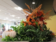 Corporate-Interior-Plantscape-Philadelphia-1415