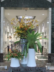 Corporate-Interior-Plantscape-Philadelphia-1444