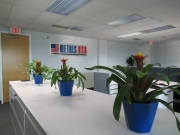 indoor-plants-for-businesses-philadelphia-2017-11