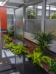 indoor-plants-for-businesses-philadelphia-2017-2
