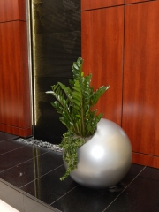 indoor-plants-for-businesses-philadelphia-2017-5