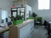 indoor-plants-for-businesses-philadelphia-4570