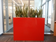 indoor-plants-for-businesses-philadelphia-4606