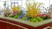 interior-plant-design-plantscape-philadelphia-03