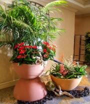 interior-plant-design-plantscape-philadelphia-0421