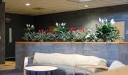 interior-plant-design-plantscape-philadelphia-3558