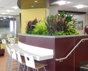 interior-plant-design-plantscape-philadelphia-3587