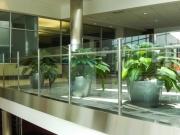 interior-plant-design-plantscape-philadelphia-3809