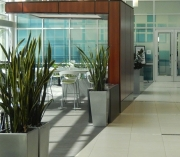 interior-plant-design-plantscape-philadelphia-3816