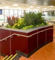 interior-plant-design-plantscape-philadelphia-40