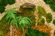 Interior-Plant-Design-Moss-Walls-Philadelphia-5701