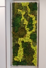 Moss-Wall-Art-Center-City-Philadelphia-1