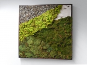 moss-walls-for-businesses-philadelphia-2018-2