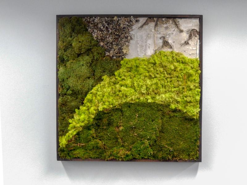 & Moss Walls Philadelphia