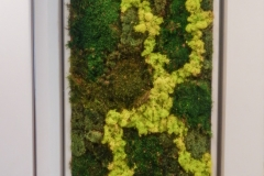 Moss-Wall-Art-Center-City-Philadelphia-1
