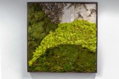 moss-walls-for-businesses-philadelphia-2018-1