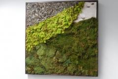 moss-walls-for-businesses-philadelphia-2018-2