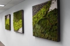 moss-walls-for-businesses-philadelphia-2018-3