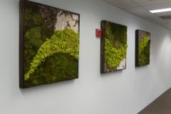 moss-walls-for-businesses-philadelphia-2018-5