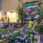 Cultivate15-Columbus Convention Center Special Event Display
